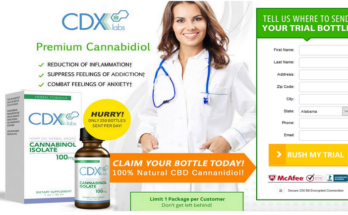 CDX Labs CBD Oil 1